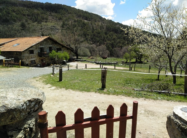 Una granja ecológica preciosa muy cerquita de Madrid: Castilla verde