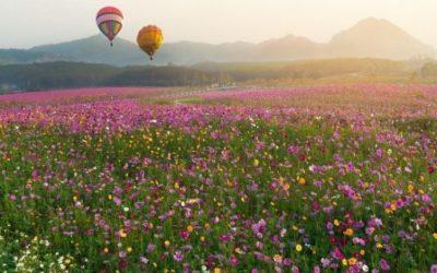 Un relajante paseo en globo con vistas impresionantes
